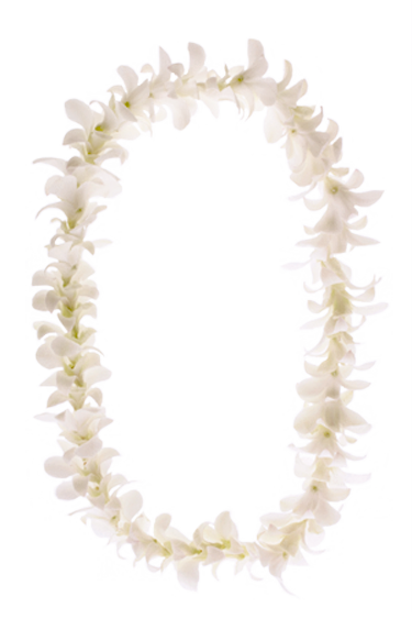 Leis By Ron Quot Hawaii S Largest Supplier Of Leis Quot